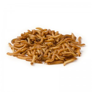 Buffalowormen-100-ml-28107-4