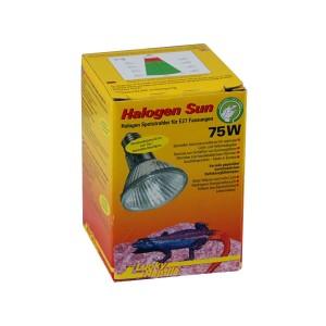 lucky-reptile-halogen-sun-75w-hs-75-976-p